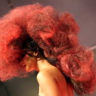 salon centric-hair show (5)