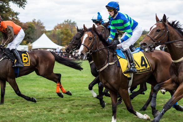 far hills horse race (28)