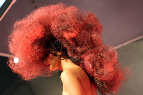 salon centric-hair show (5)